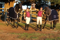horses_153647_01